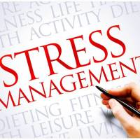 Transforming stress to build resilience & increase performance (English)