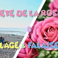 Fête de la Rose 2019 & Plage & Falaises normandes - DAY TRIP