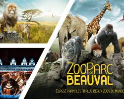Week-end Zoo de Beauval, Orléans, Tours & Blois 2019 79,9€ Promo