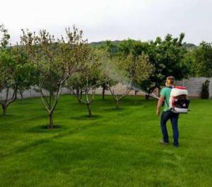 Ofer servicii de grădinar