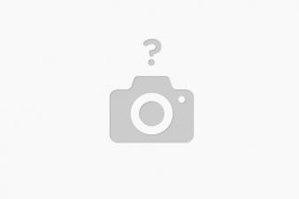 tagliatele basilico cu vita si gorgonzola