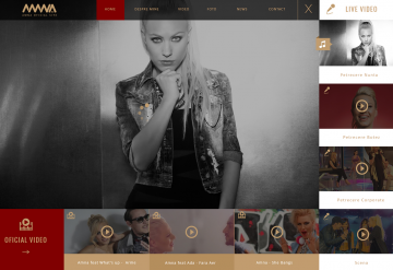 Portofoliu Website Muzica & Video - AMNA