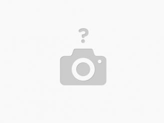 Portofoliu Management de proiect, Management de task - WebMin