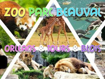 Week-end Zoo de Beauval, Orléans, Tours & Blois - 12-13 juin