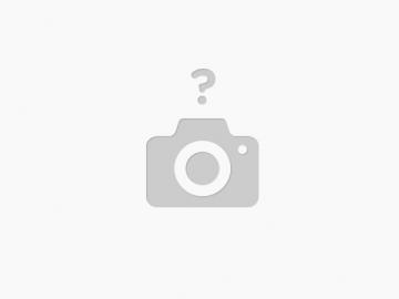 Château de Chenonceau & Dégustation incluse - 9 janvier
