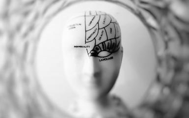 Experiment inedit de conectare a creierelor
