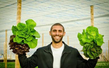 Agricultura viitorului