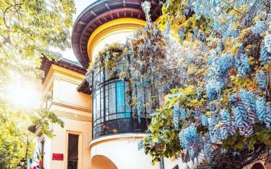 Casa N.N. Turnescu, una dintre bijuteriile de pe strada Dionisie Lupu
