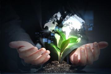 Provocările creșterii unei afaceri și cum să te reinventezi de fiecare dată