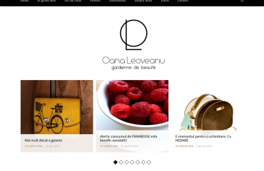 WebSite Oana Leoveanu