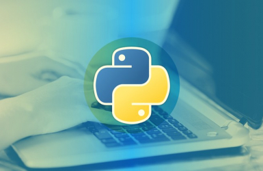 What a beginner should know about Python?