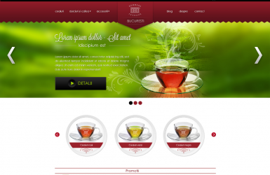 Magazin online comercializare ceaiuri - Demmers Teehaus