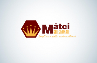 Mobile Android Application and iOS Application for Apiary Administration - Matciselectionate.ro