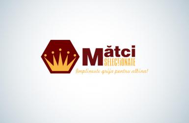 Aplicatie Mobile Android & iOS pentru Administrarea Stupinelor - Matciselectionate.ro