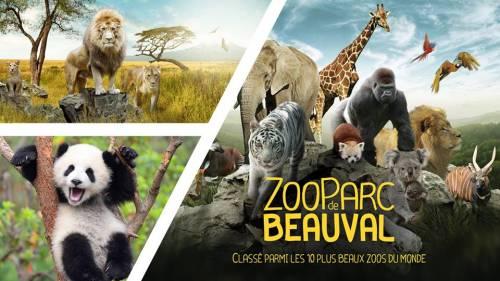 """Résultat de recherche d'images pour """"zoo de Beauval"""""""