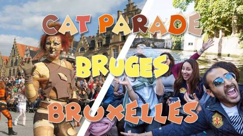 Weekend Cat Parade & Bruges & Bruxelles