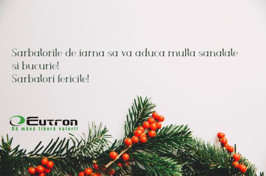 Echipa Eutron vă urează Sărbători Fericite!
